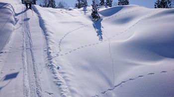snow1415_Joukoku04.jpg