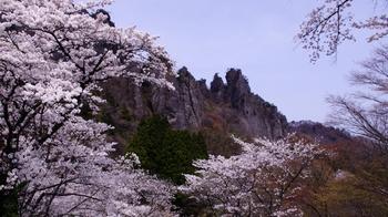 touringMyogiSakura02.jpg